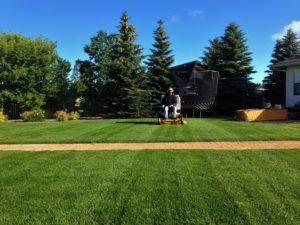 Residential Lawn Care Steinbach