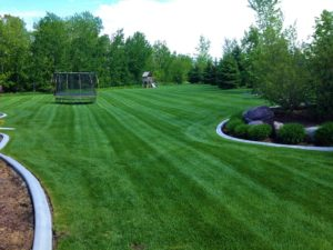 Beautiful dark green residential lawn with bright mower stripes